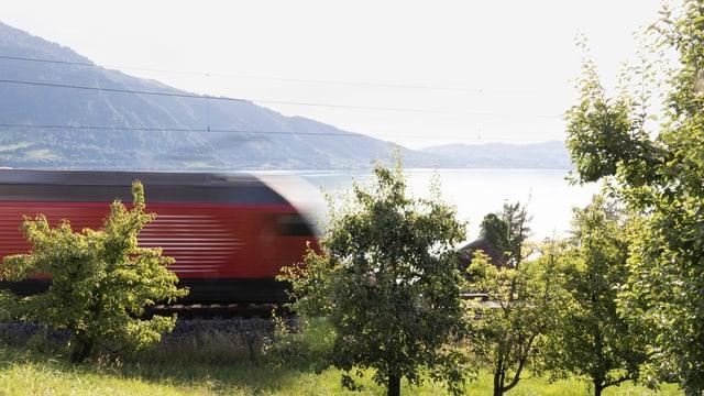 Zug fährt auf einer Strecke an einem See.