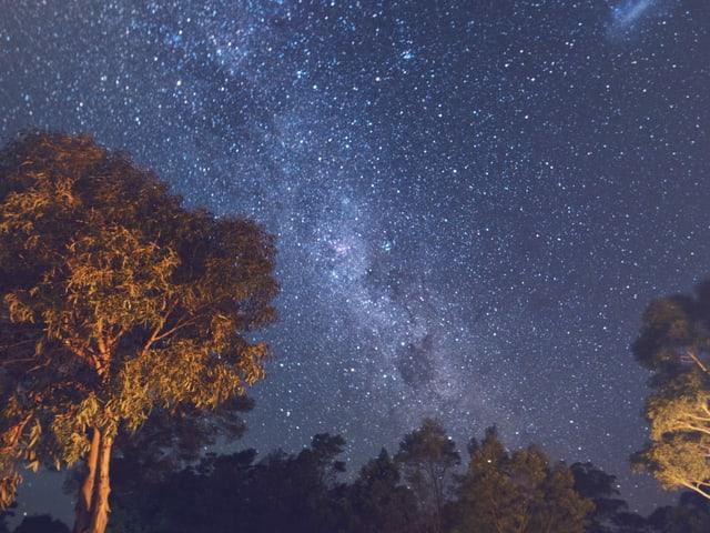 Der Sternenhimmel über Wombat Creek.