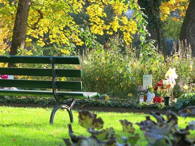 Pflanzen und eine Sitzbank.