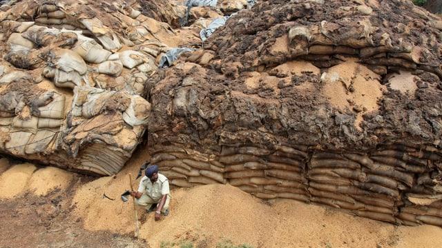 Ein Mann bewacht Tonnen von verderbendem Getreide.