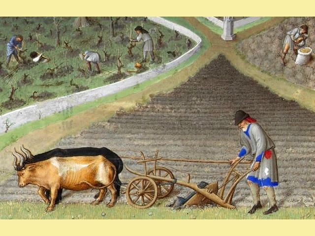 Bauer pflügt Feld, dahinter bereiten andere ein Weingut vor
