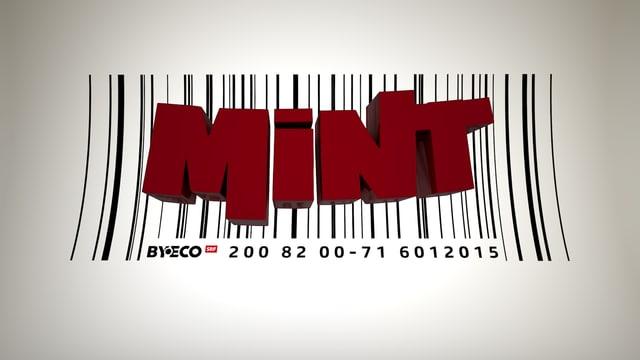 Webprojekt «Mint»
