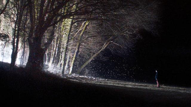 Ein Junge steht in der Dunkelheit am Waldrand.