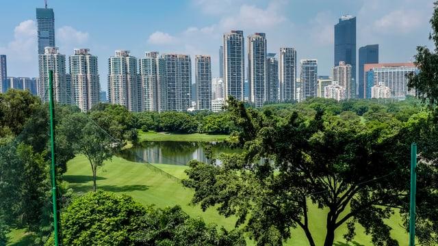 Ein Golfplatz, im Hintergrund zahlreiche Hochhäuser.