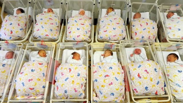 Neugeborene in Kinderbettchen.