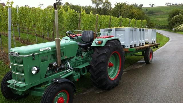 Traktor vor Rebberg