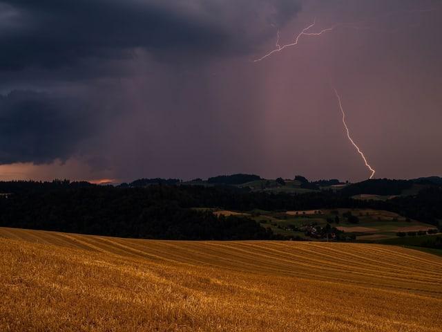 Ein Blitz schlägt im Hintergrund ein und erhellt den Himmel. Im Vordergrund ein Weizenfeld.