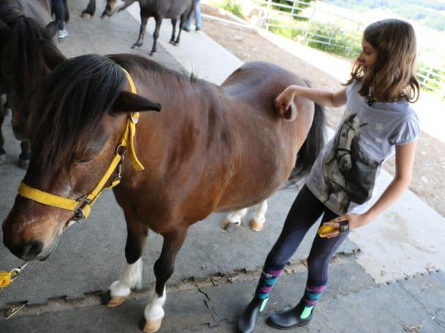 Pony und Mädchen