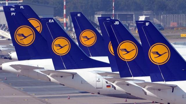 Die Hecks einiger Lufthansa-Maschinen.