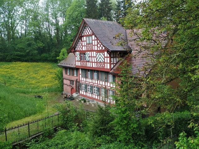 Riegelhaus im Grünen