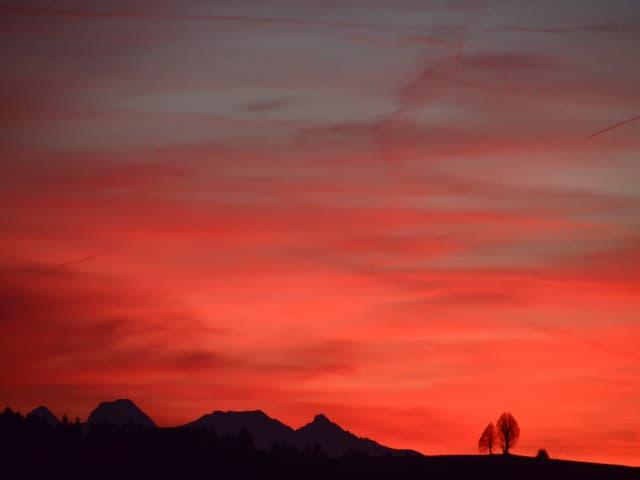Rot bis rosa Himmel.