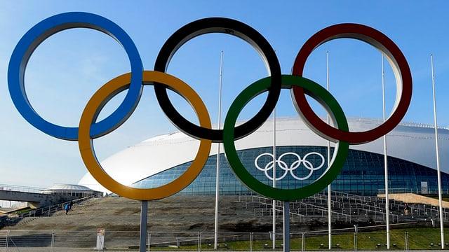 Die olympischen Ringe vor der Eishalle in Sotschi.