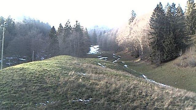 Grüne Wiesen und vereinzelte kleine Schneefelder.