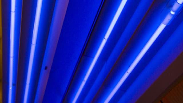 blau leuchtende Neonröhren