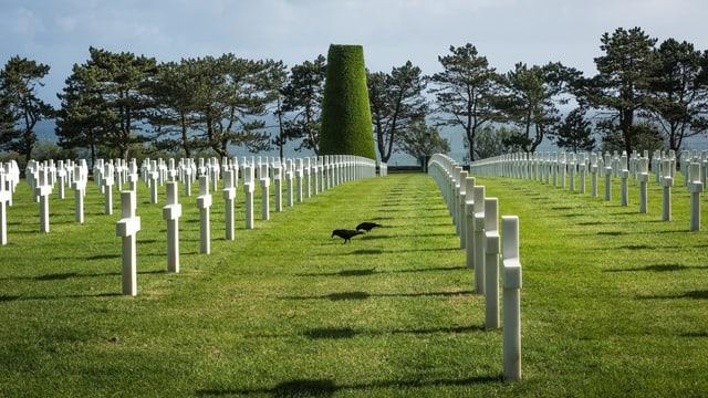 Grabkreuze im Soldatenfriedhofs in Colleville-sur-Mer in der Normandie.