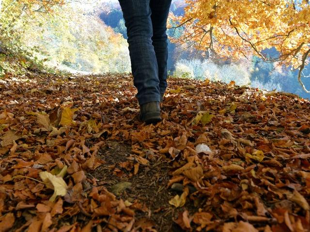 Wanderer stapft durchs Laub.