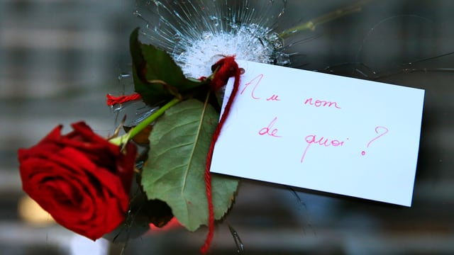 Rose in einem Einschlussloch in einem Pariser Café nach der Terrorserie vom 13.11.15