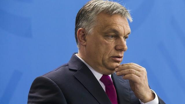 Orban vor blauem Hintergrund.