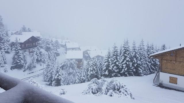 Wintereinbruch in Arosa, der Ferienort liegt in schönem Schnee