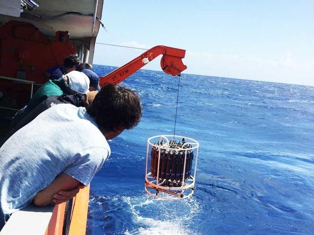 Leute lehnen über Schiffsbrüstung. Sie beobachten, wie ein rundes Objekt aus dem Meer gezogen wird.