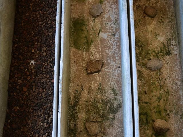Löcher in Kistchen mit Steinen bedeckt