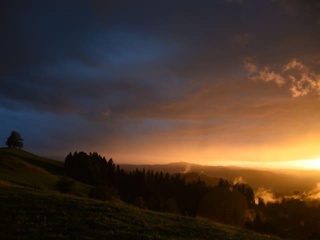 Abendstimmung mit dunklen und hellen Wolken.