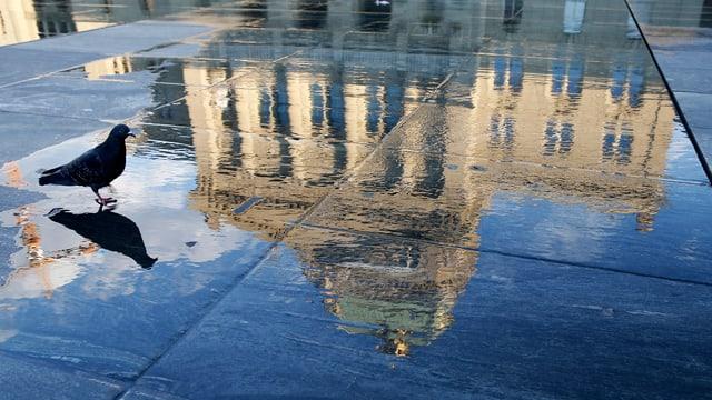 Das Bundeshaus spiegelt sich in einer Pfütze auf dem Bundesplatz.