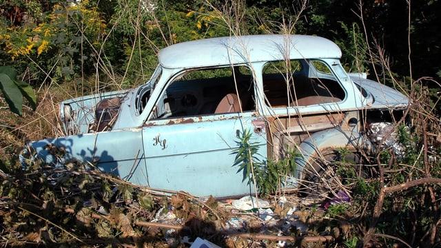 Ein Trabant liegt schrottreif im Gebüsch.