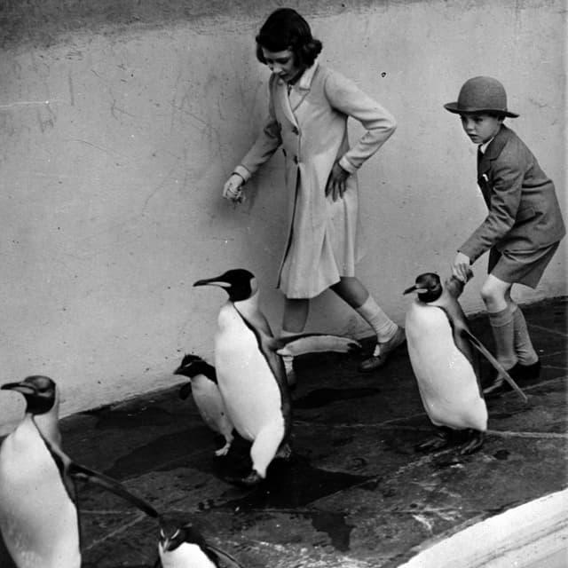 La pitschna Elizabeth cun in cumpogn e pinguins en il zoo da Londra.