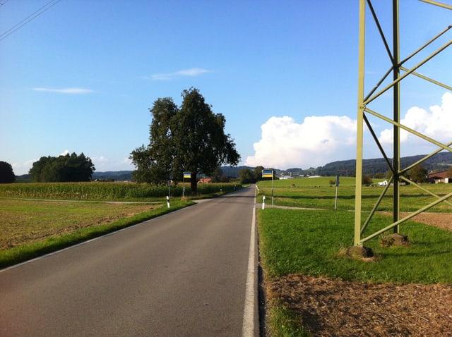 Eine Landstrasse zwischen grünen Wiesen mit einer Bushaltestelle