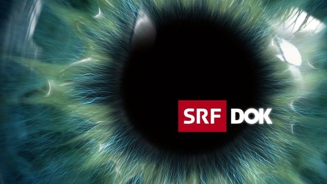 Das «DOK»-Logo