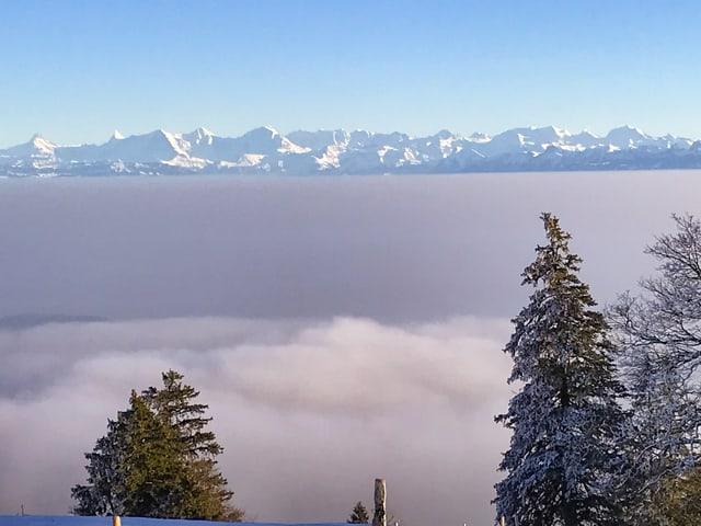 Nebelmeer, dahinter Berner Alpen