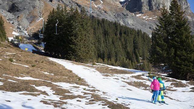 Weisser Streifen in grünem Gras, zwei Skifahrer lassen sich darauf von Lift ziehen.