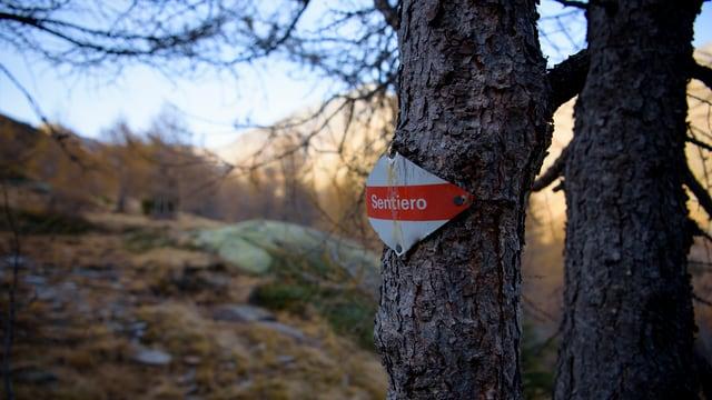 Senda da viandar en la Val Malvaglia (Serravalle) sin il territori dal Parc Adula.