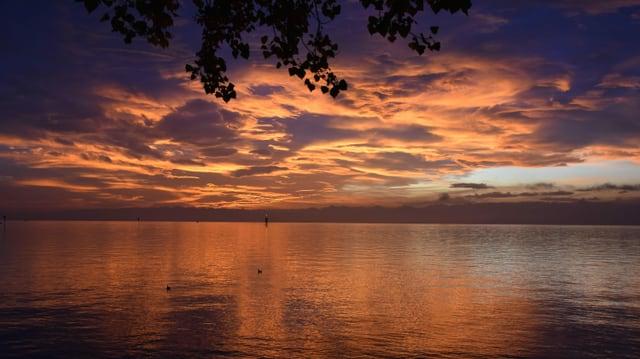 Blick über den morgendlichen Bodensee mit einem schönen Morgenrot.