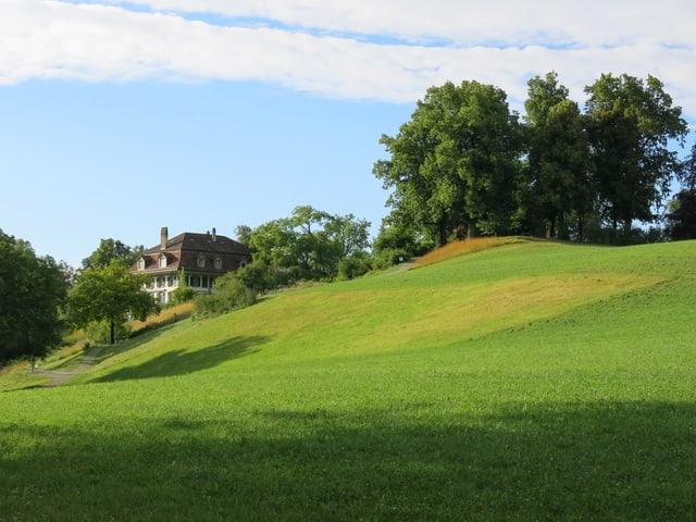 Die Elfenau-Wiese. Im Hintergrund das Herrschaftshaus. Rechts daneben das Känzeli mit Baumbestand.