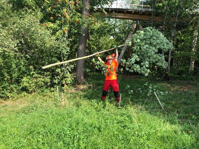 Reto Scherrer hebt Baum hoch
