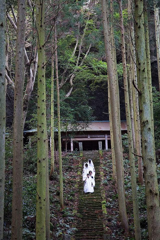Vier weiss gekleidete Gestalten schreiten eine Treppe im Wald hinab.