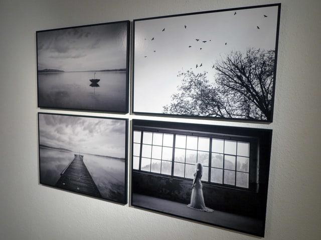 Vier Fotografien des Murtensees