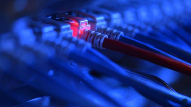Ein Netzwerkkabelstecker leuchtet in einer Netzwerkzentrale rot