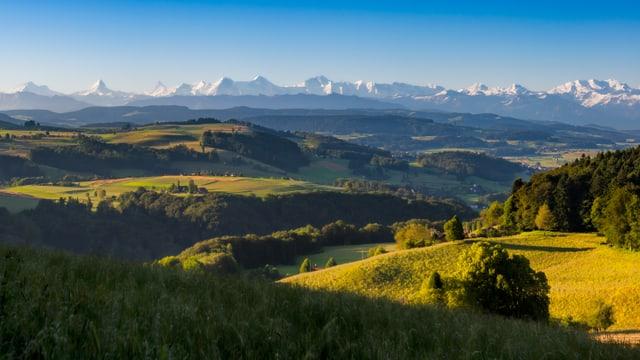 Ein perfekter Blick heute vom Bantiger Richtung Alpen.