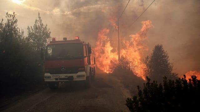 Waldbrände in Griechenland.
