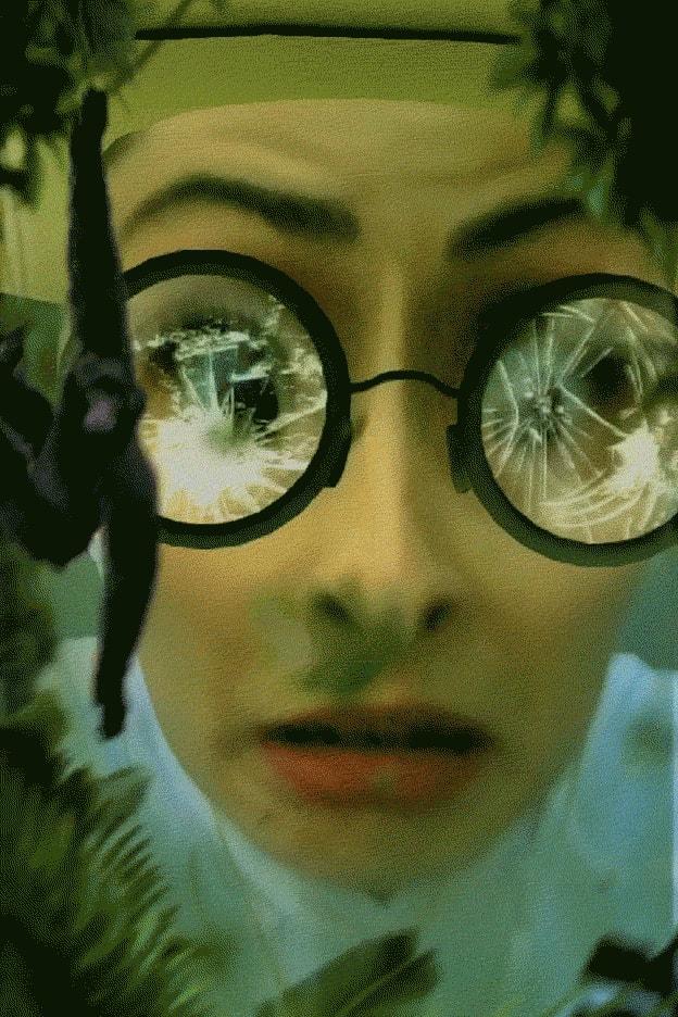 Ein Dialog zwischen der Sängerin Adele und einer Frau im Tropenhut, inszeniert mit Snapchat-Lenses.
