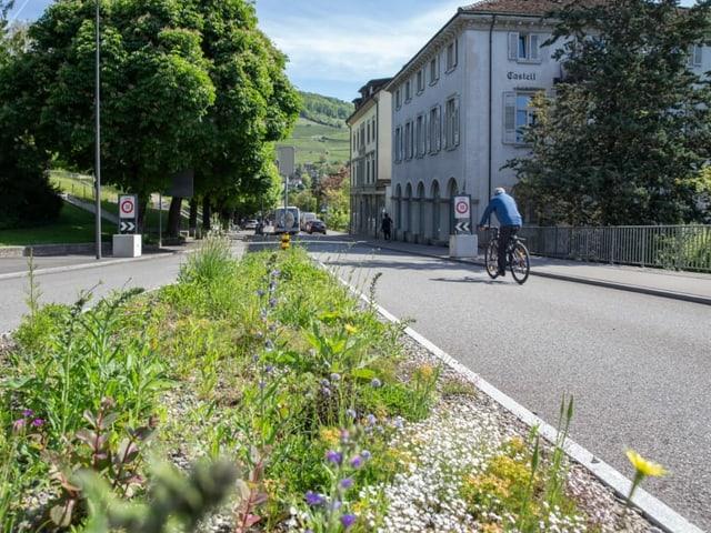 Bepflanzter Strassenrand, Velofahrer im Hintergrund.
