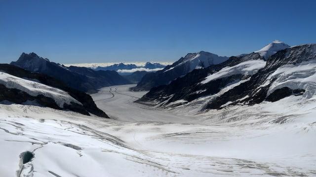 Blick vom Jungfraujoch auf den Aletschgletscher.