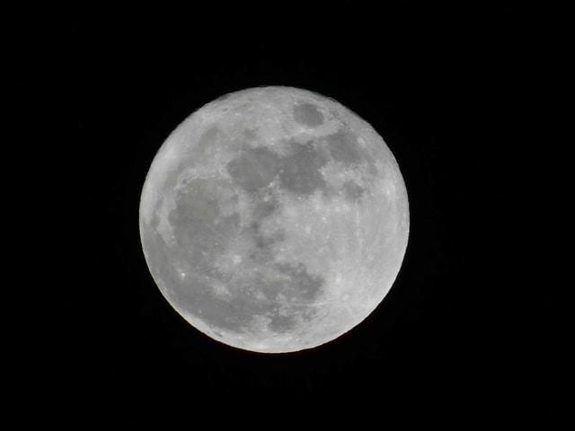 der Himmel ist wolkenlos um so schöner die Mondscheibe
