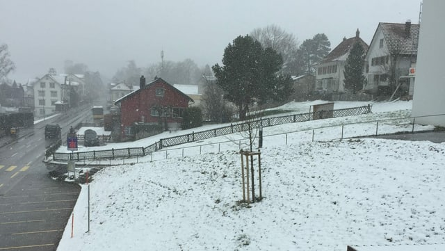 Leicht verschneite Wiesen in Heiden.
