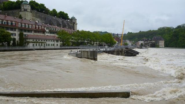 Die Aare in Bern war randvoll - Eindruck vom Schwellenmätteli Richtung Matte