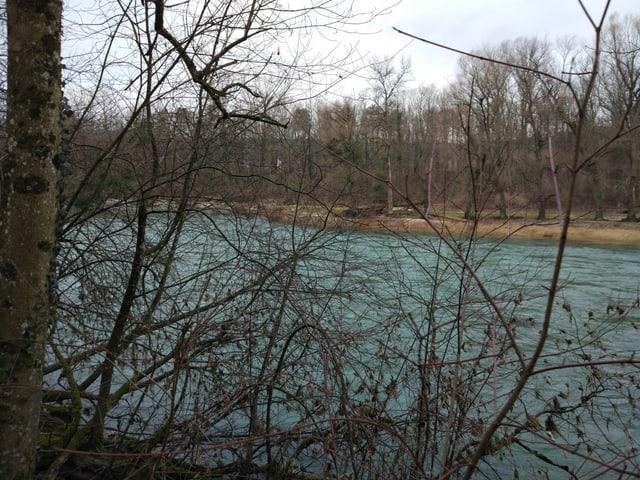 Fluss Aare