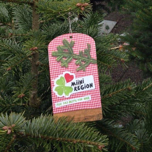 Die Ausnahme: Der Tannenbaum ist aus der Region!